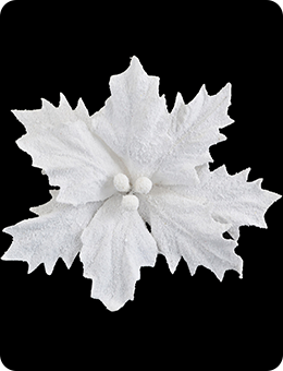 Пуансеттия белая (24 cм)